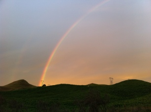 a hazy rainbow above the farm, Whakamaru